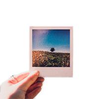 фото полароид воронеж, сделать полароид фото недорого, быстро, качественно